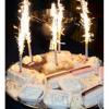 Ook de taart mag niet ontbreken, in dit geval een heerlijke ijstaart!